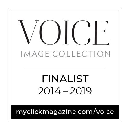 VOICE badges_2014-2019.jpg