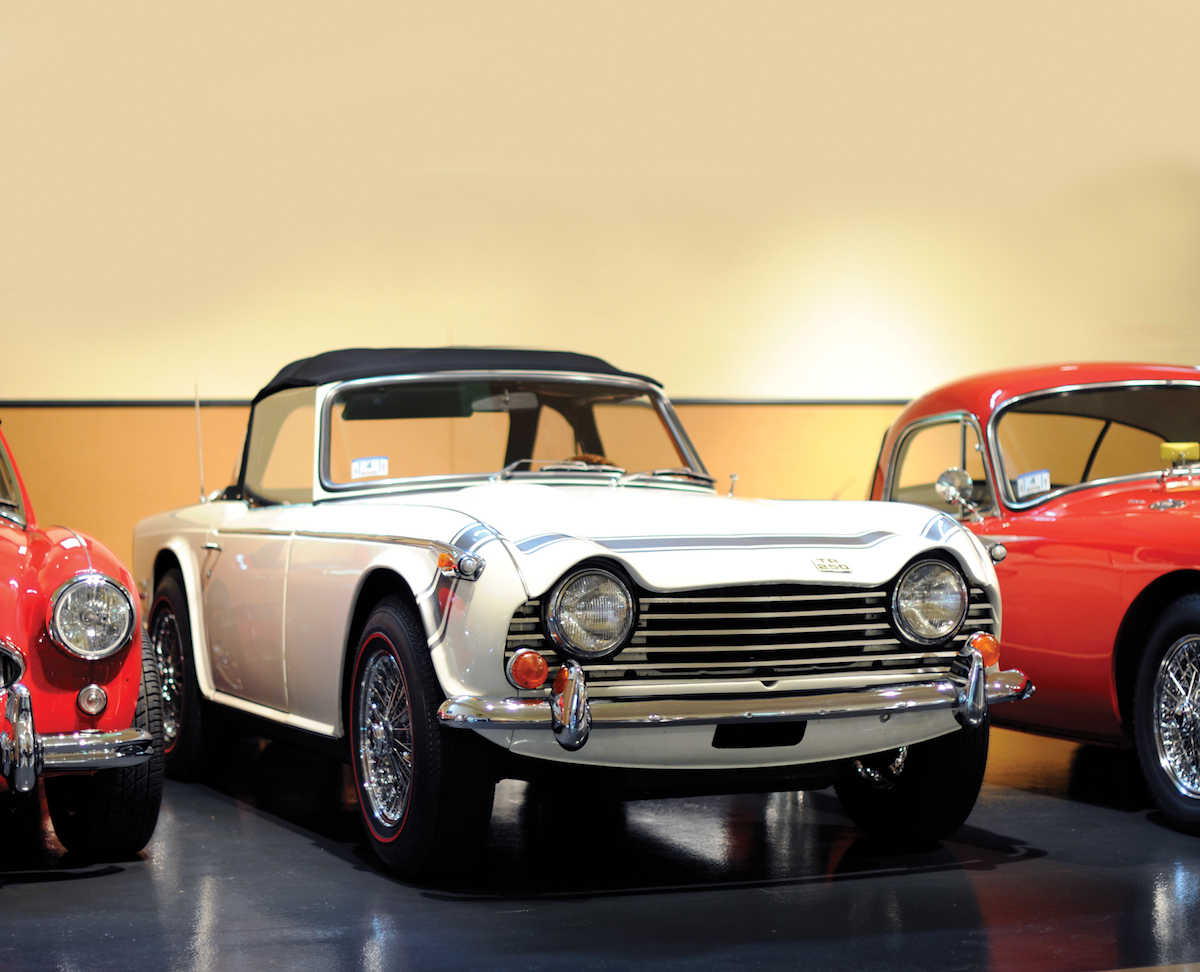 european looking sports car in car barn.jpg
