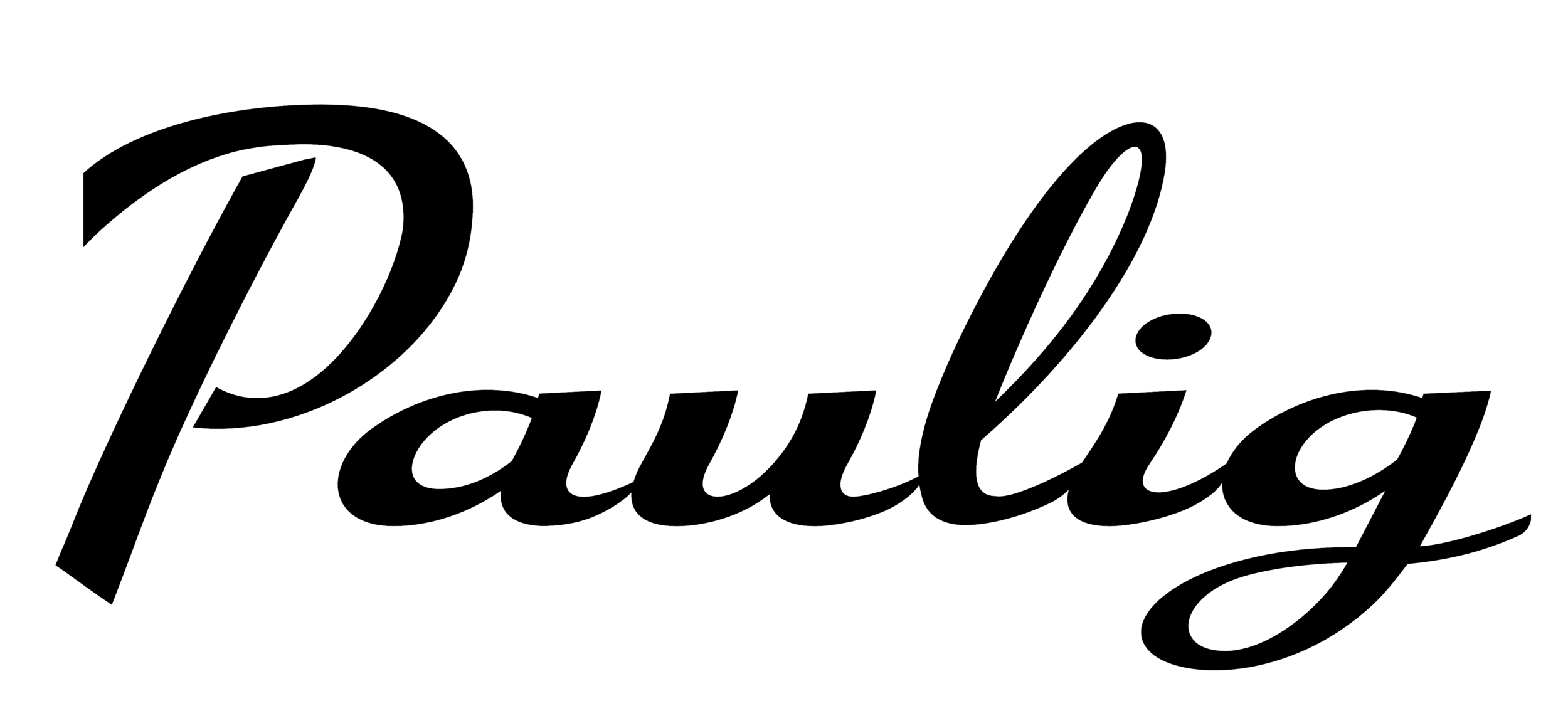 Paulig_logo_transparent_bg.png