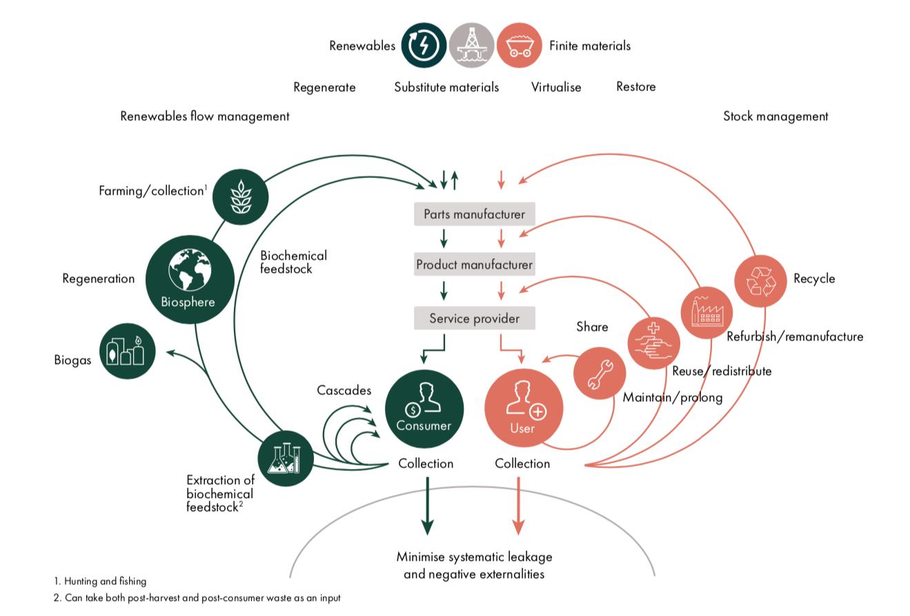 Circular Economy Infographic by   Ellen MacArthur Foundation