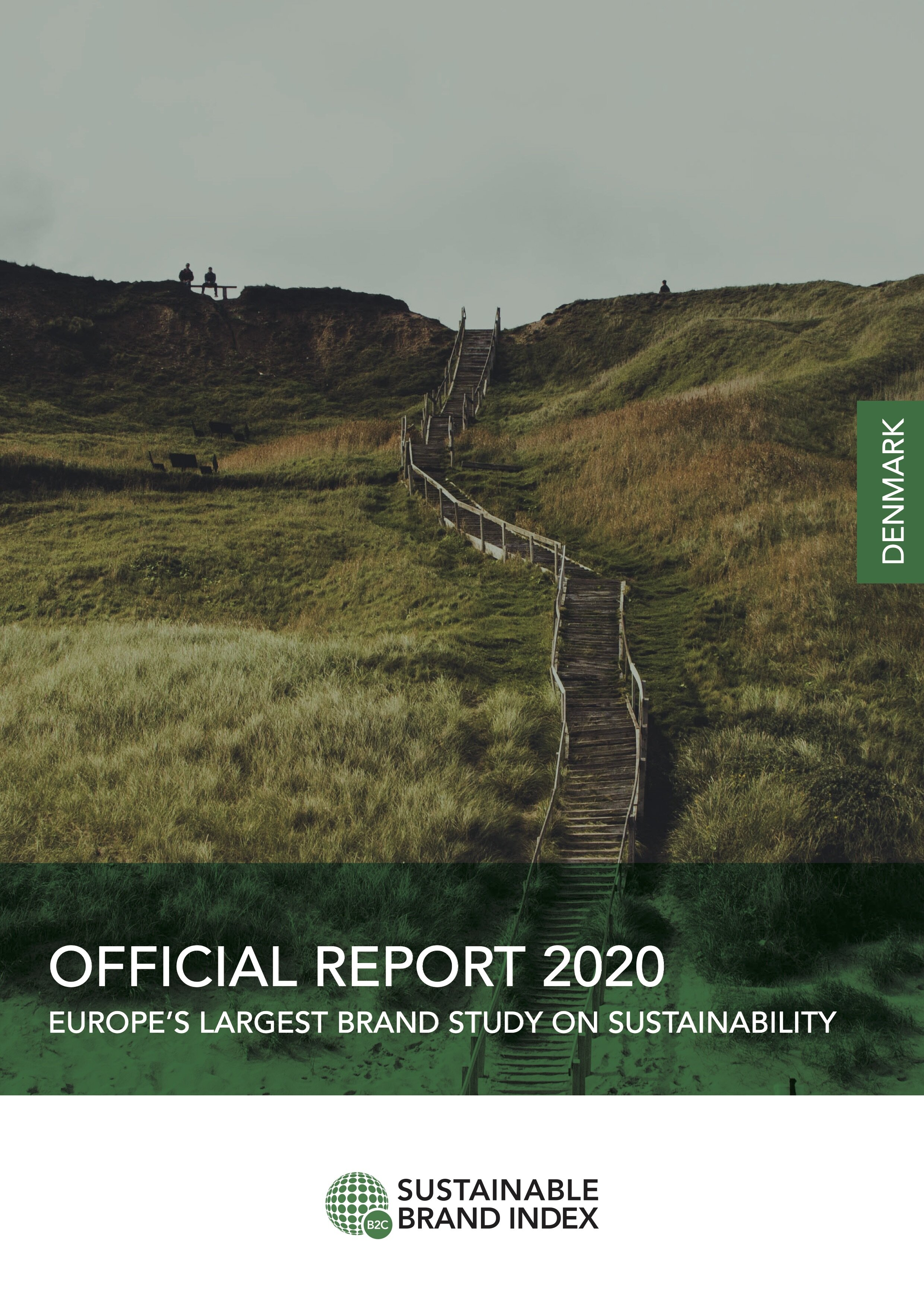 DK_Official Report_2020_High res-p1.jpg