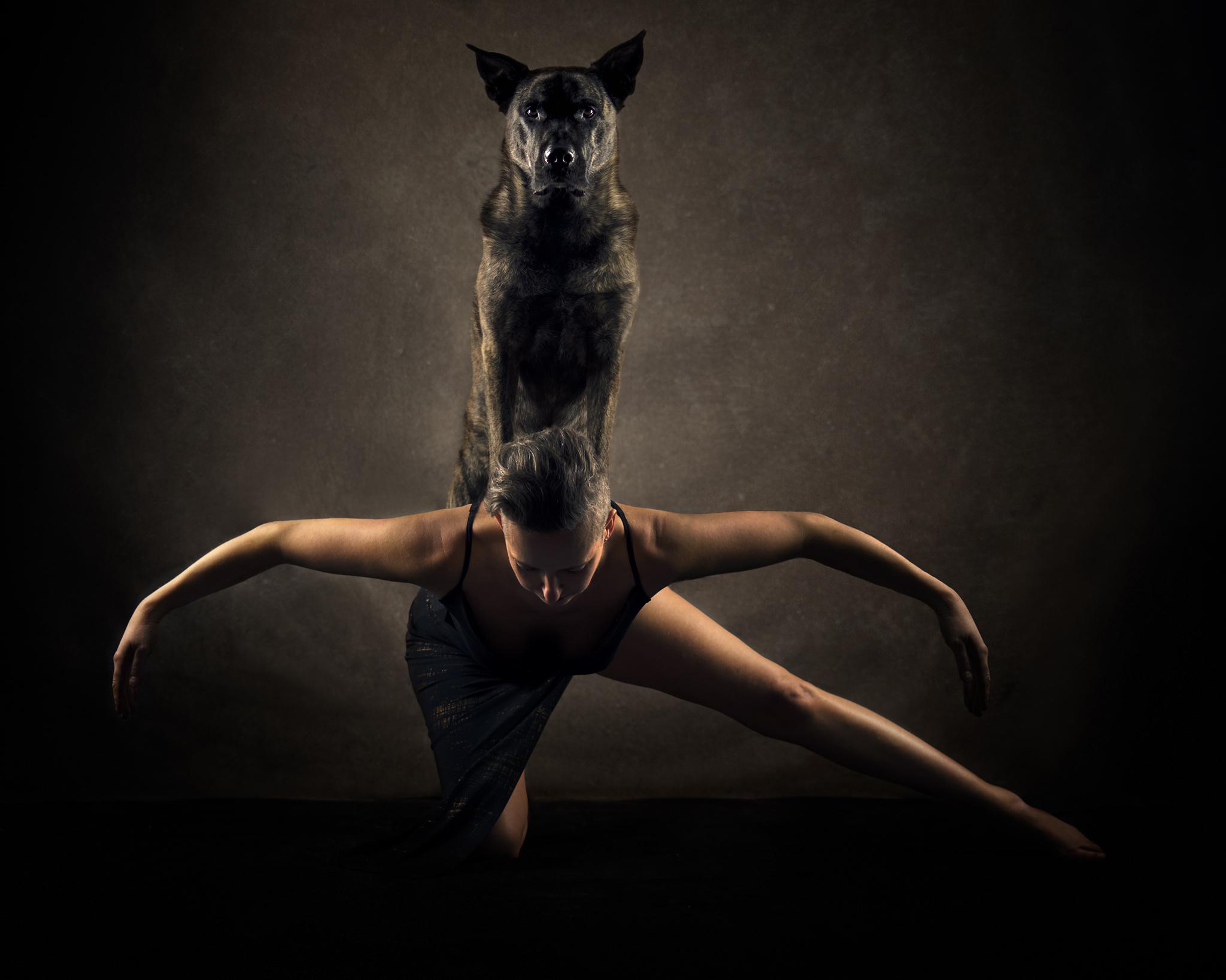 fine art porträtt hund och kvinna