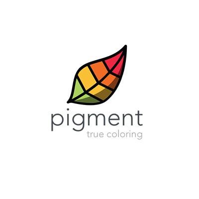 pigment_logo.jpg