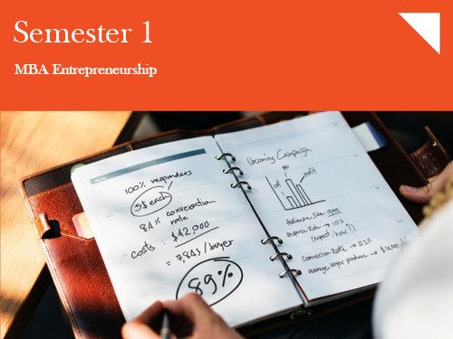 Venture Thought Process - Entrepreneurship-1: Developing the OpportunityThe Entrepreneurship Mindset| Industry 4.0| Business Plan Lab
