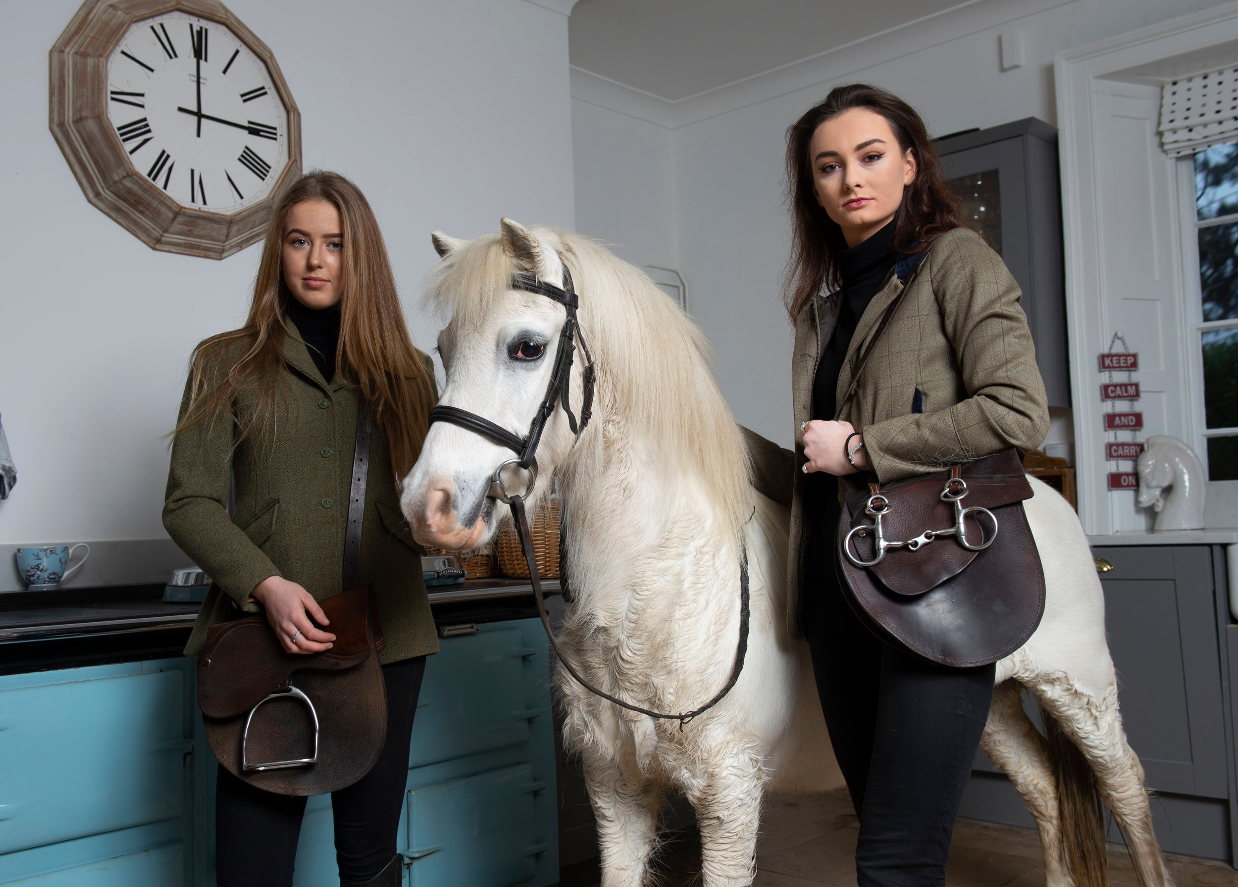 Calling all Horse Lovers… -