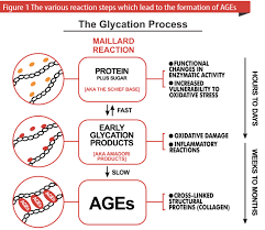 glycation process.png