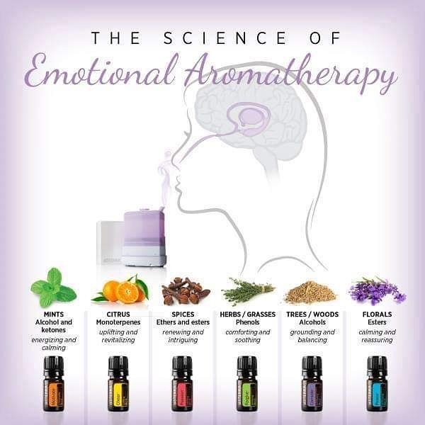 """🌹WORKSHOP Emotional Aromatherapy & Self-soothing with @mama.greenleaf & @samantha_klomp  When: 25 June 2019 - 7:30-10PM Where: Meirbrug 1 - 4th floor Investment in Self: 30€  Spaces are limited, to reserve your mat transfer 30€ to bank account: BE95 1430 9953 7158 with """"full name + emotional aromatherapy""""  Managing our emotions, particularly difficult ones, is a major health priority for so many of us today, especially with the stressful lives we often lead.  This Essential Emotions class offers a unique opportunity to learn about the natural, safe, and effective solutions to help manage mood. You'll learn that it is possible to improve our emotions, the connection between the heart, the brain, and the gut and their effect on mood, different ways to positively impact our mood using natural tools, and an increased understanding of what, how and when to use essential oils in your daily lives. With the help of a soft ball we will reset the breath and our respiratory tissues to help them function properly, moving you out of fight-or-flight mode, and through this breath we create space where we might have tensed up to block out emotions, allowing homeostasis to return to our BE-ing. This particular combination of Emotional Aromatherapy and Bodywork teaches you how to bring your body back to a calm, parasympathetic state - where your body can truly rest, digest and regenerate 💕"""