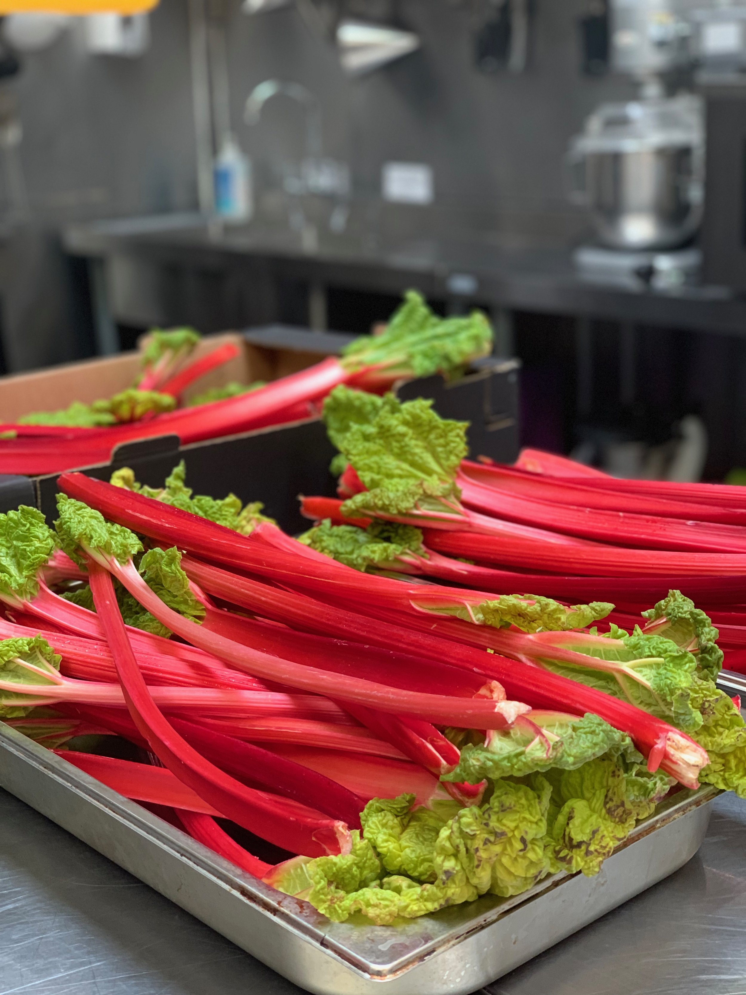 The Hill Food Company rhubarb.jpg