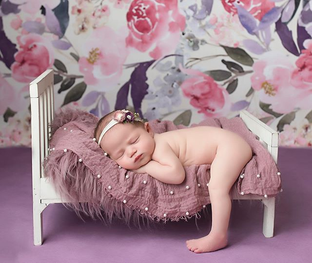 Love the pop of purple! 💜 Can't wait to step out of my comfort zone and use brighter colors in my newborn sessions! #goldmoosephotography #popofpurple #newborn #newbornportraits