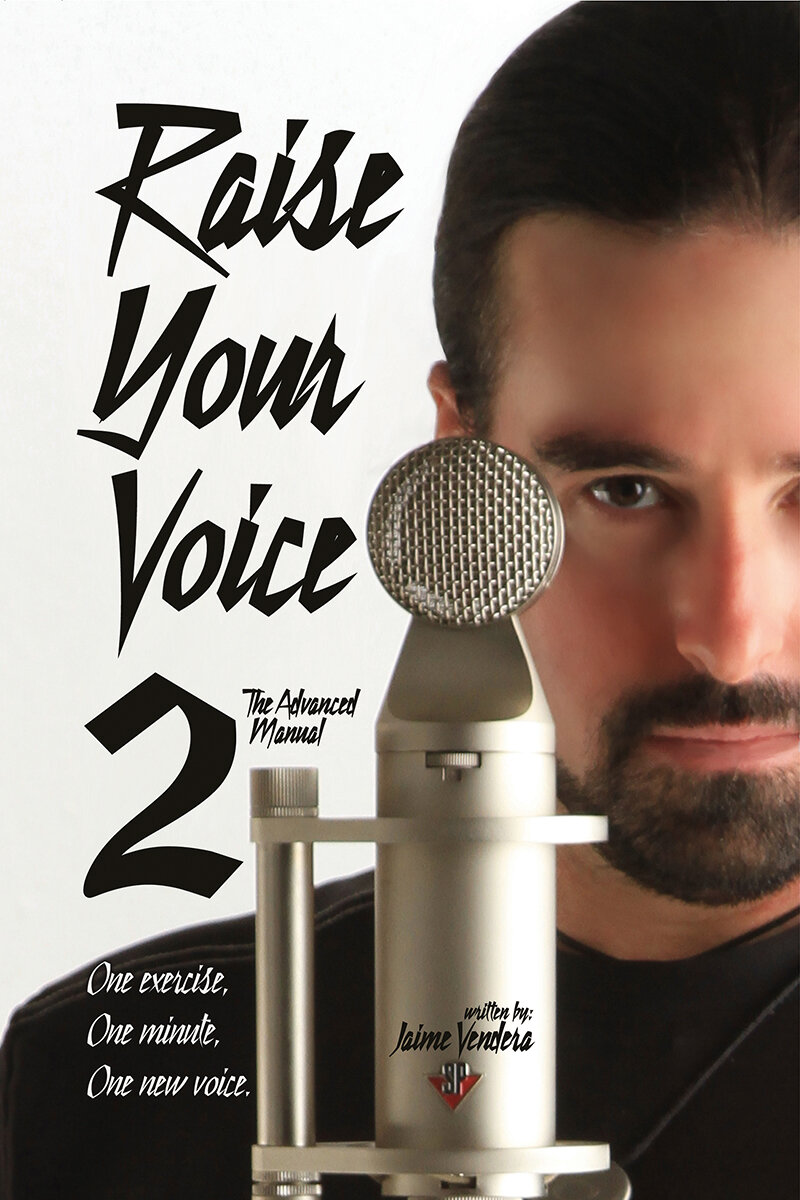 39-raise-your-voice-2.jpg