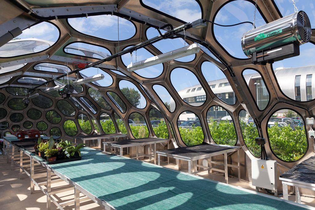 Spaceplates_greenhouse_JamieWoodley_007.jpg