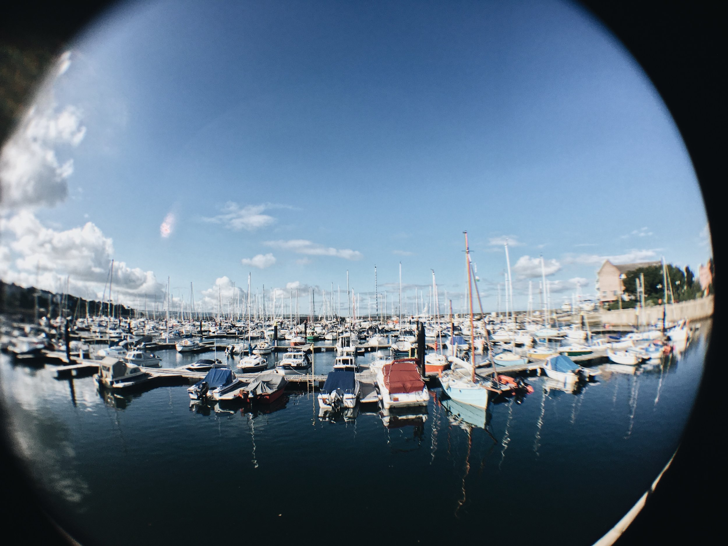 Boats docked in the harbour at Bangor Marina. Photography by Catherine Kennedy.