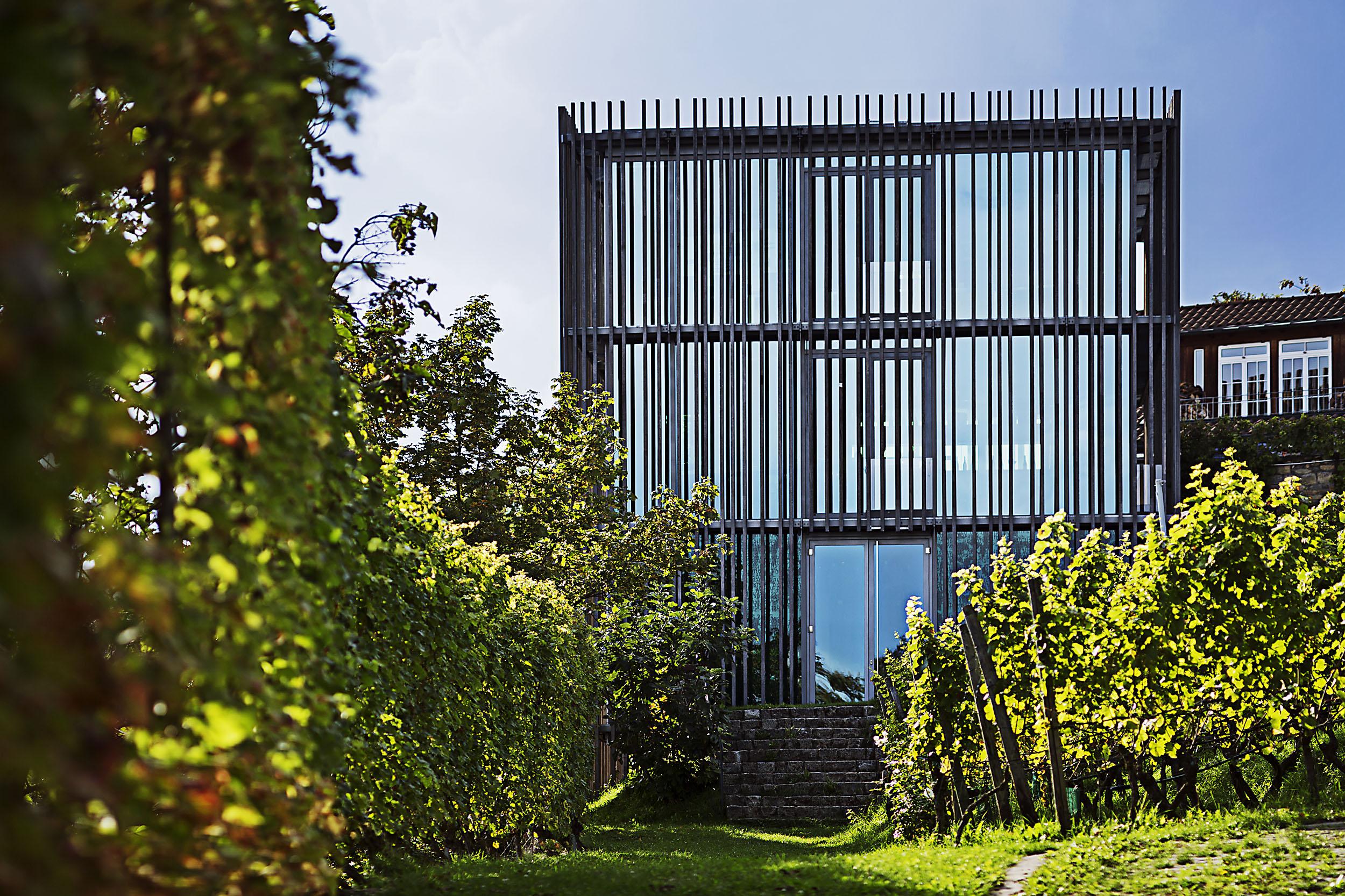 Architektur, Franken, Weingut am Stein