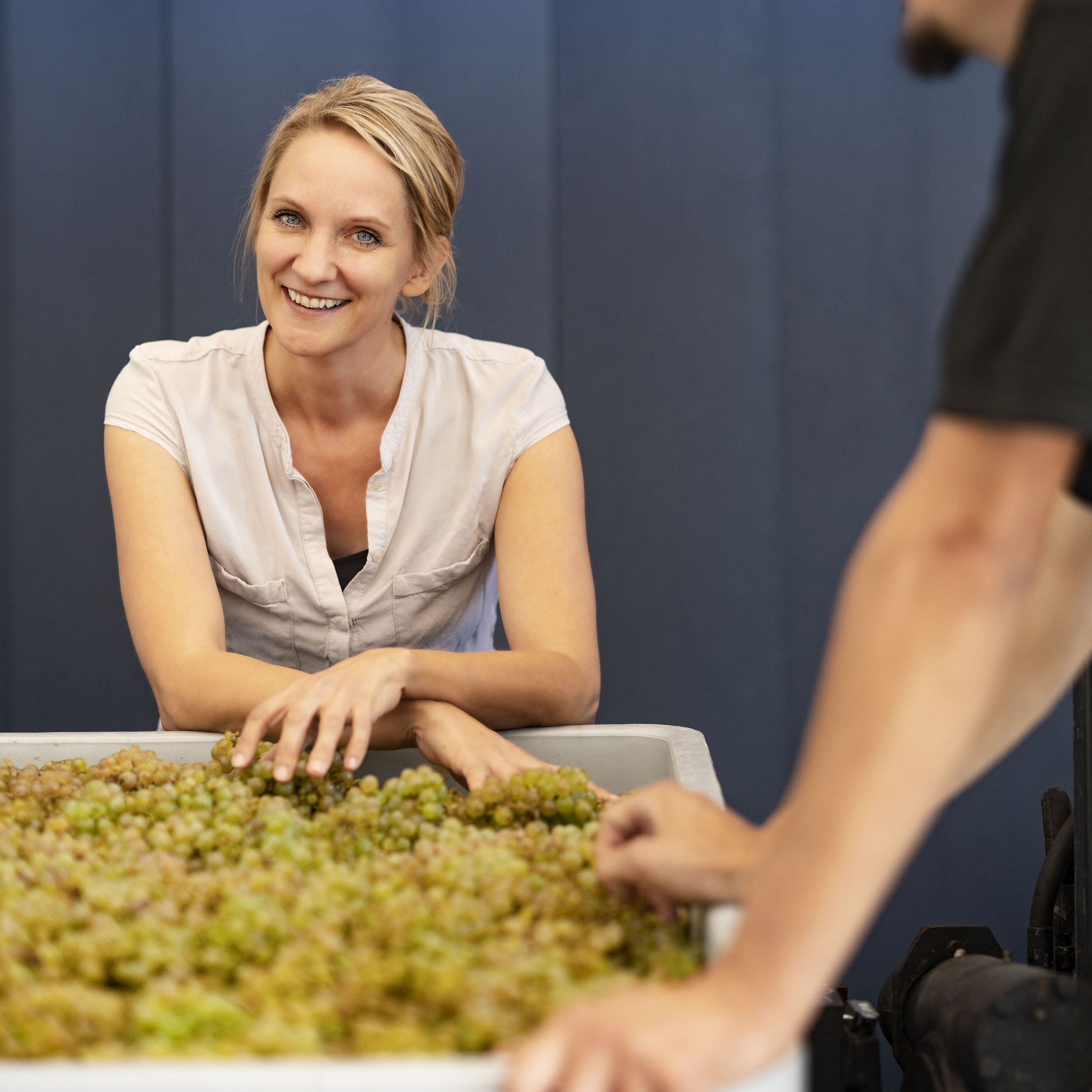 Eva Fricke Weingut, Weinfotografie, Weinfotograf Markus Bassler