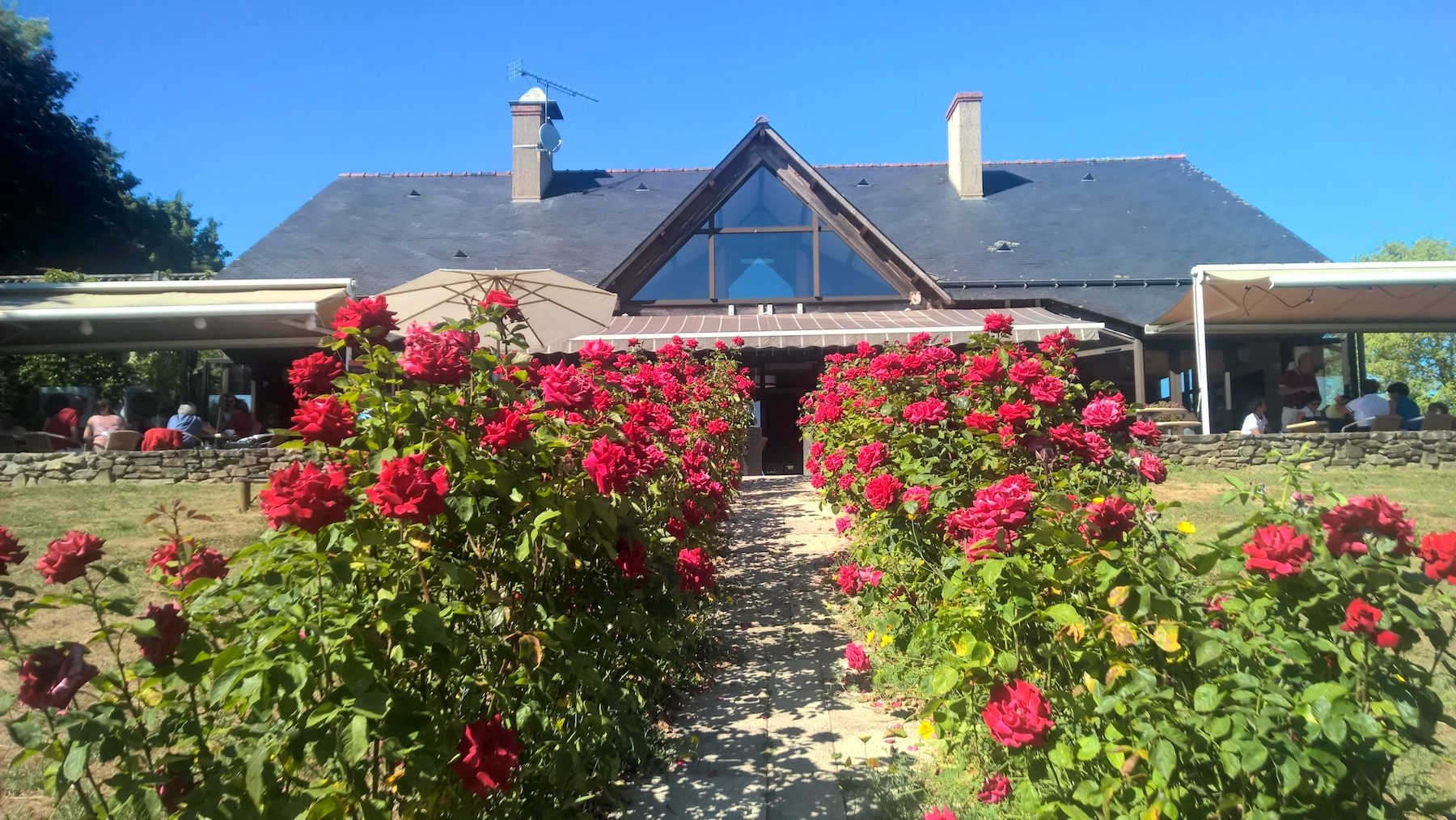 Terrasse-Anjou-Golf-Roses-Rouges-.jpg
