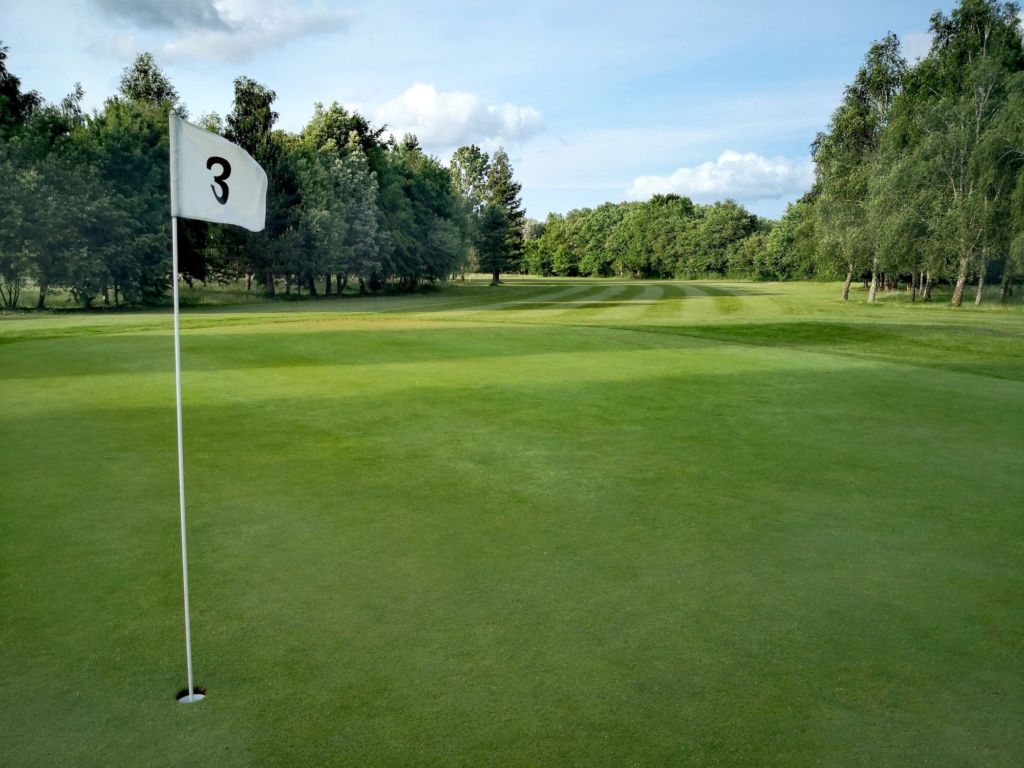 Green 3 Anjou Golf juin 2019 .jpg