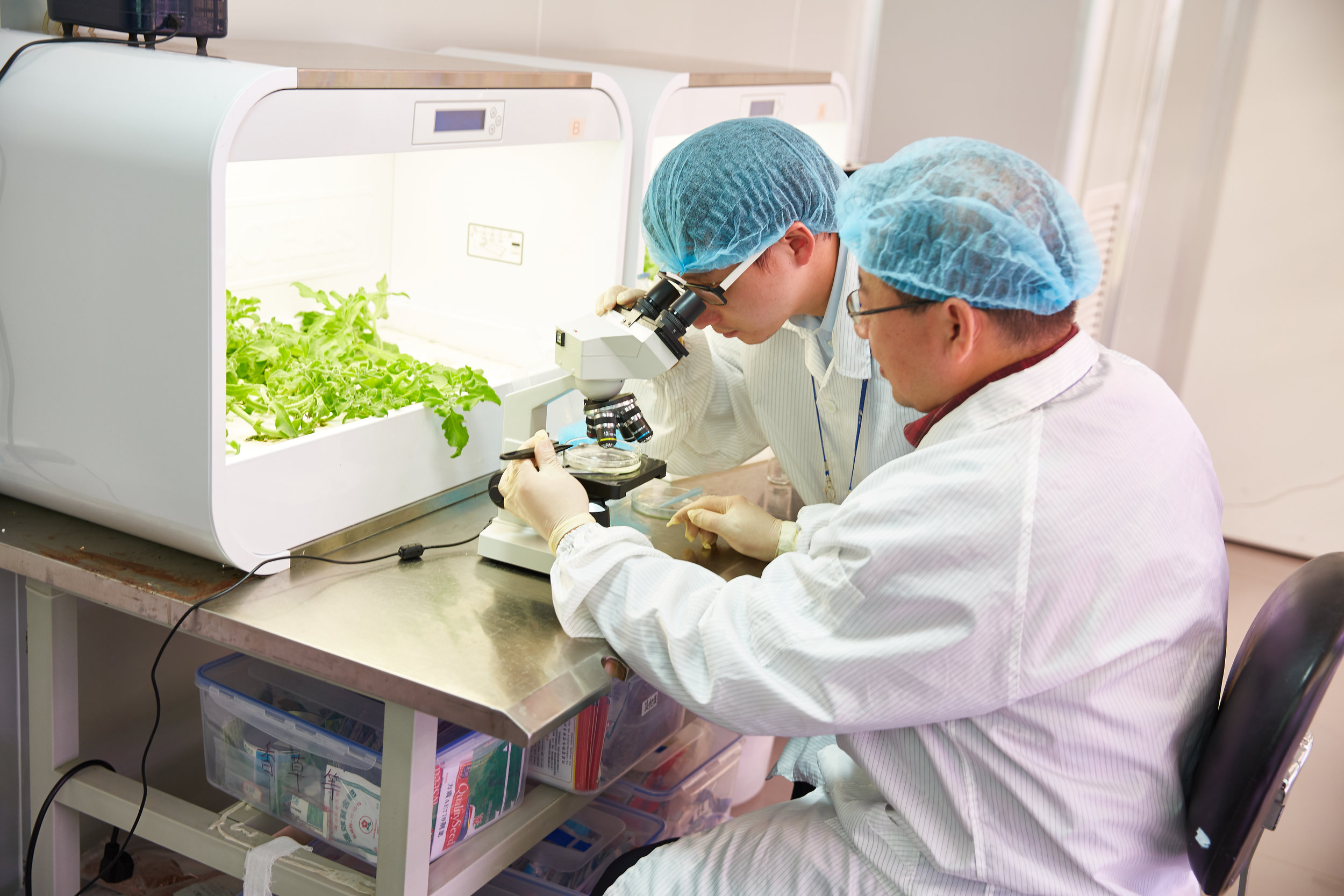 Plant Nutrition is critical to unlocking plant genetics.