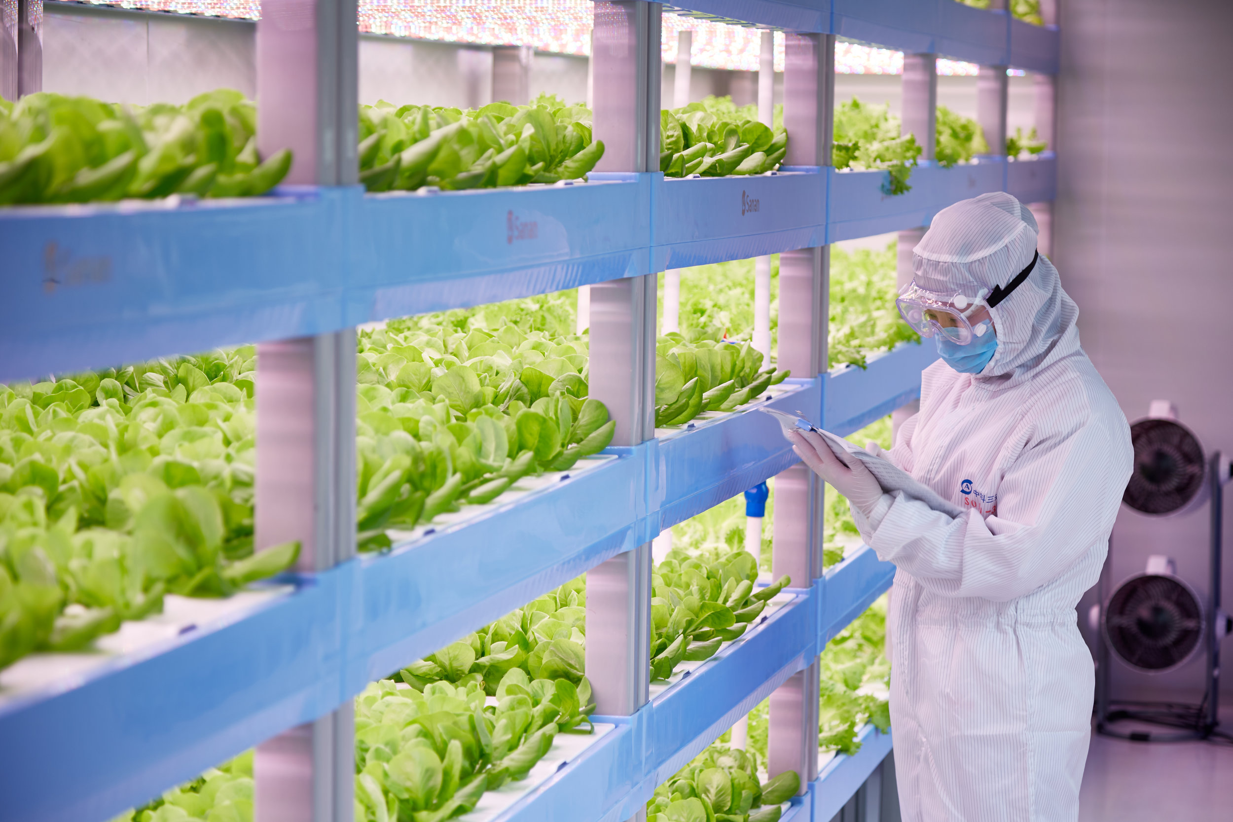 Vertical Farming is science, innovation, and technology.