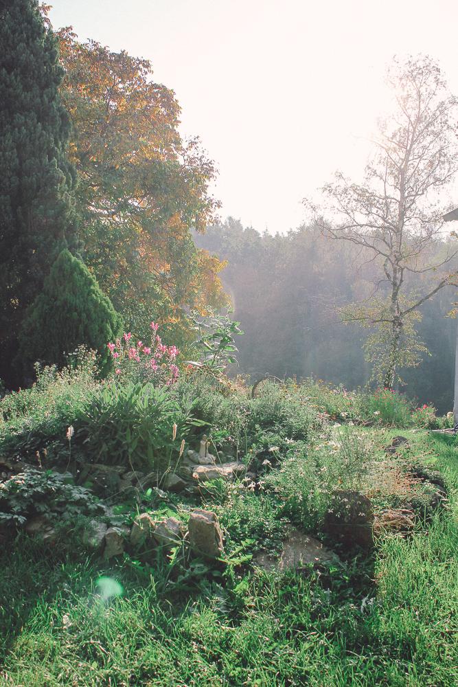 Die Seele des Herbstes im Naturgarten