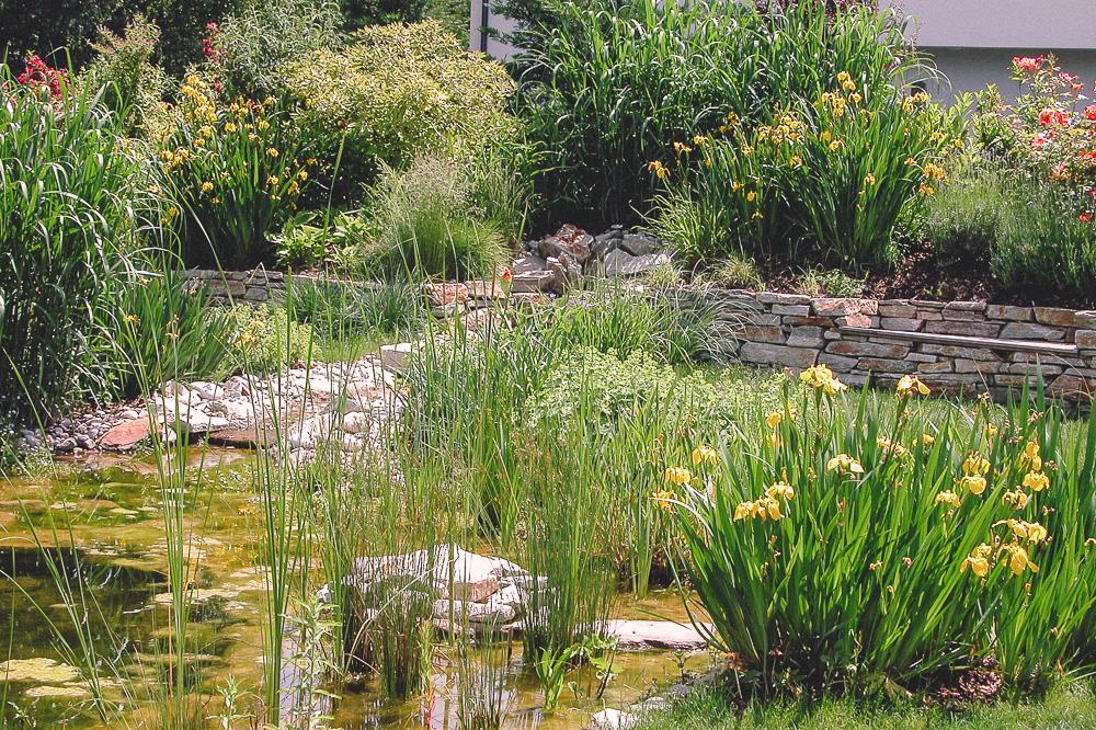 Wasser im Garten.jpg