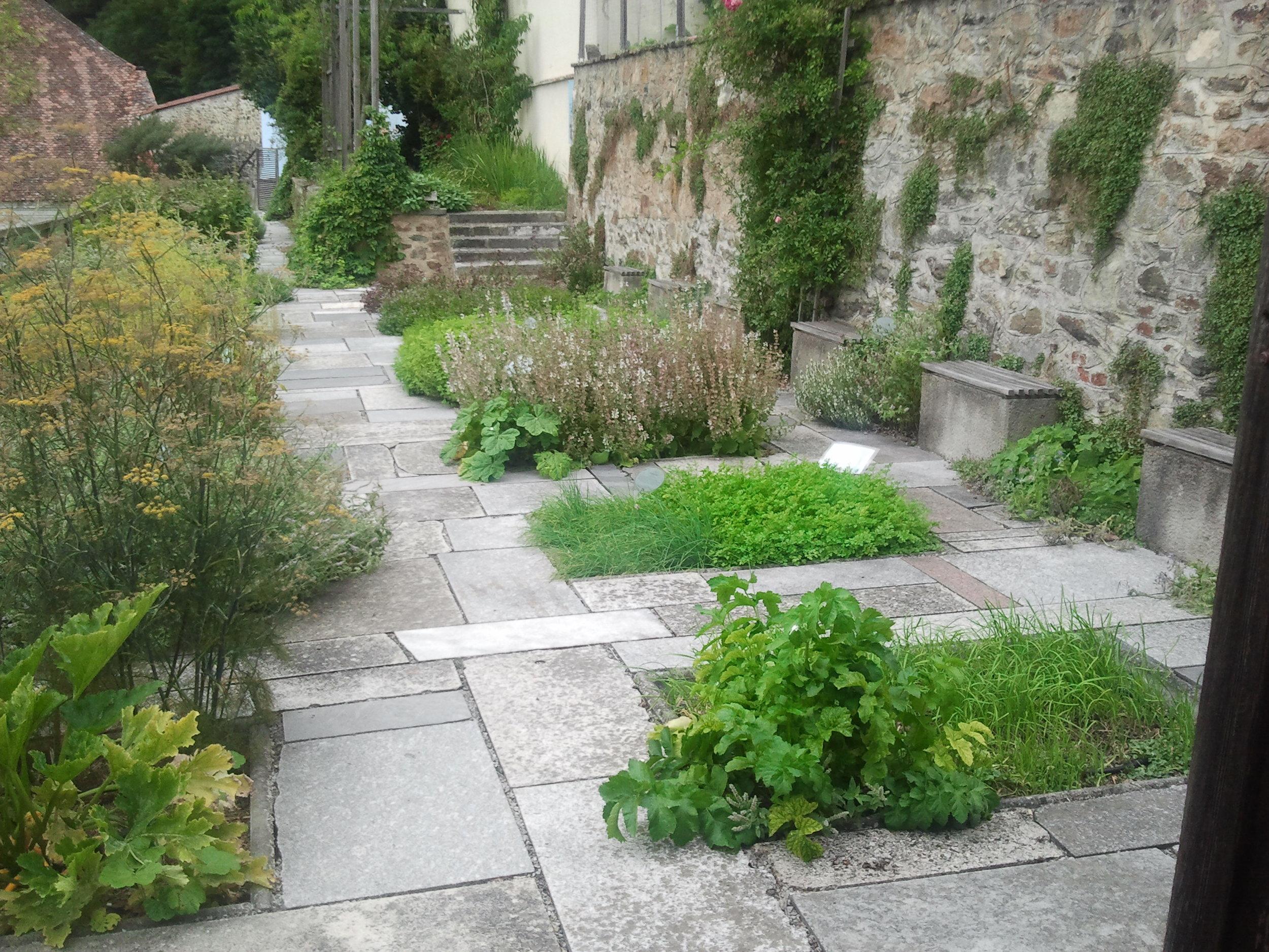 Kräutergarten im Naturgarten