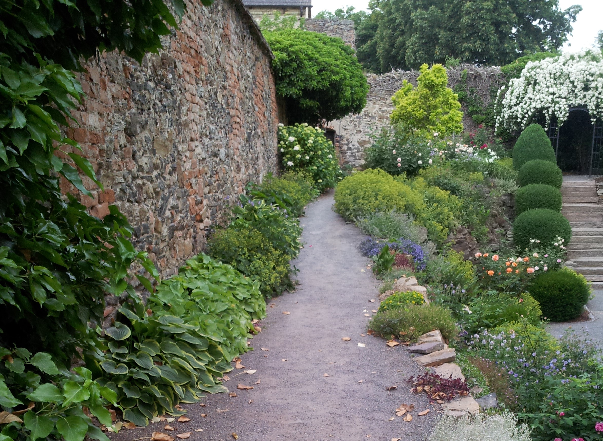 Ein Gartenweg auf dem die Naturgartenseele wandelt