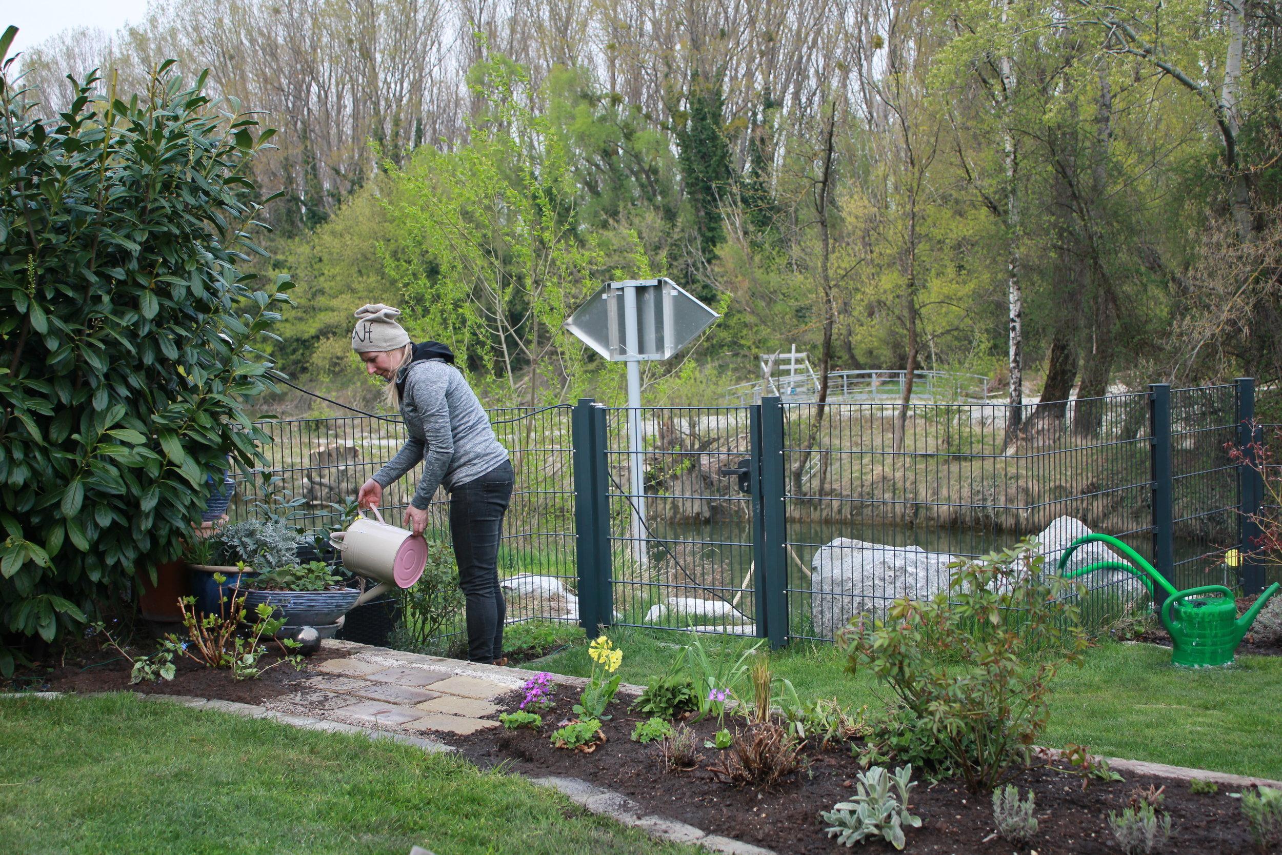 Gartenbegleitung bei der Staudenbeetgestaltung