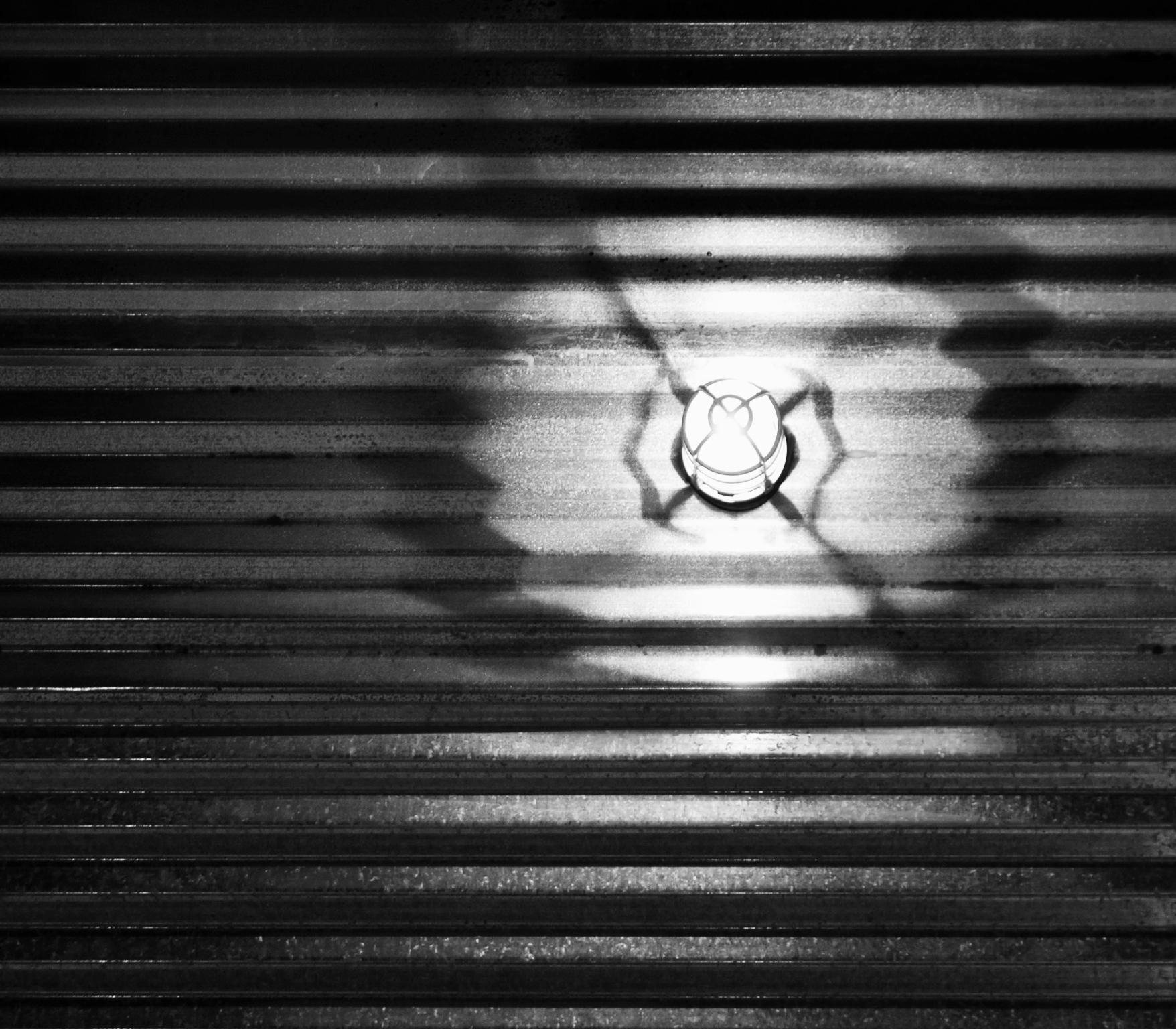 bw-light on corrugated metal detail.jpg