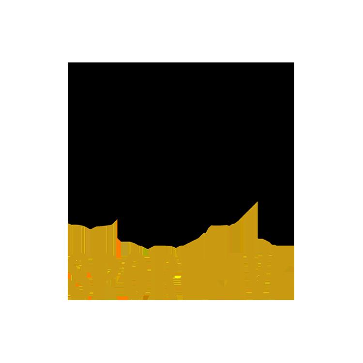 SportFive.png