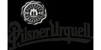 logo_PPAS_BW.png
