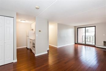 Cambridge, MA - Beautifully renovated condominium in Harvard Square. 2 bedroom/2 full baths with white kitchen, white quartz counters and a private outdoor balcony! Walking distance to Harvard, MIT, and Kendall Square!