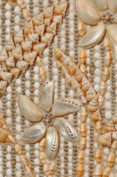 shell-shocker1e.jpg