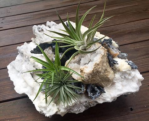 mineral-garden1.jpg