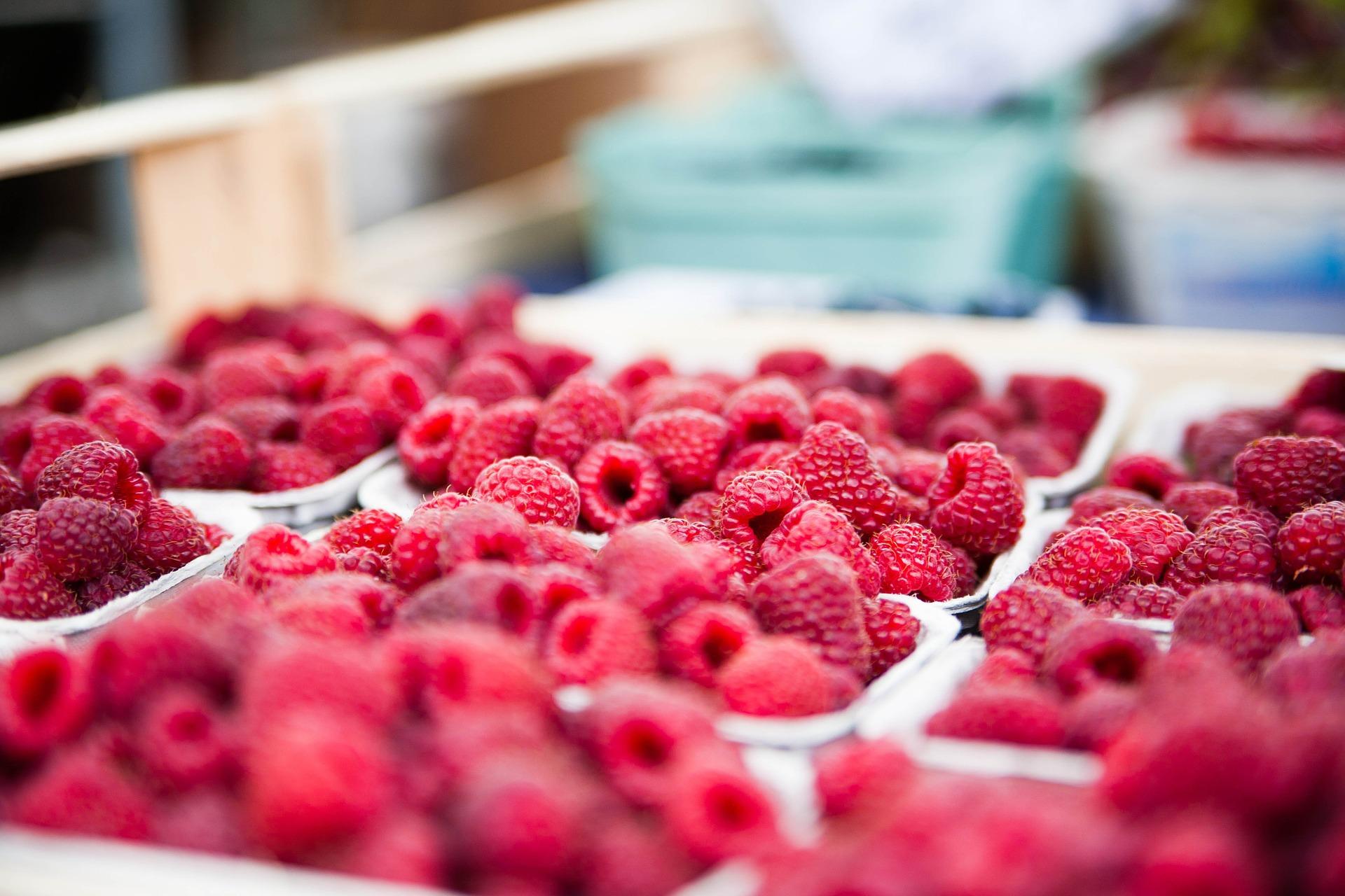 raspberries-422979_1920.jpg