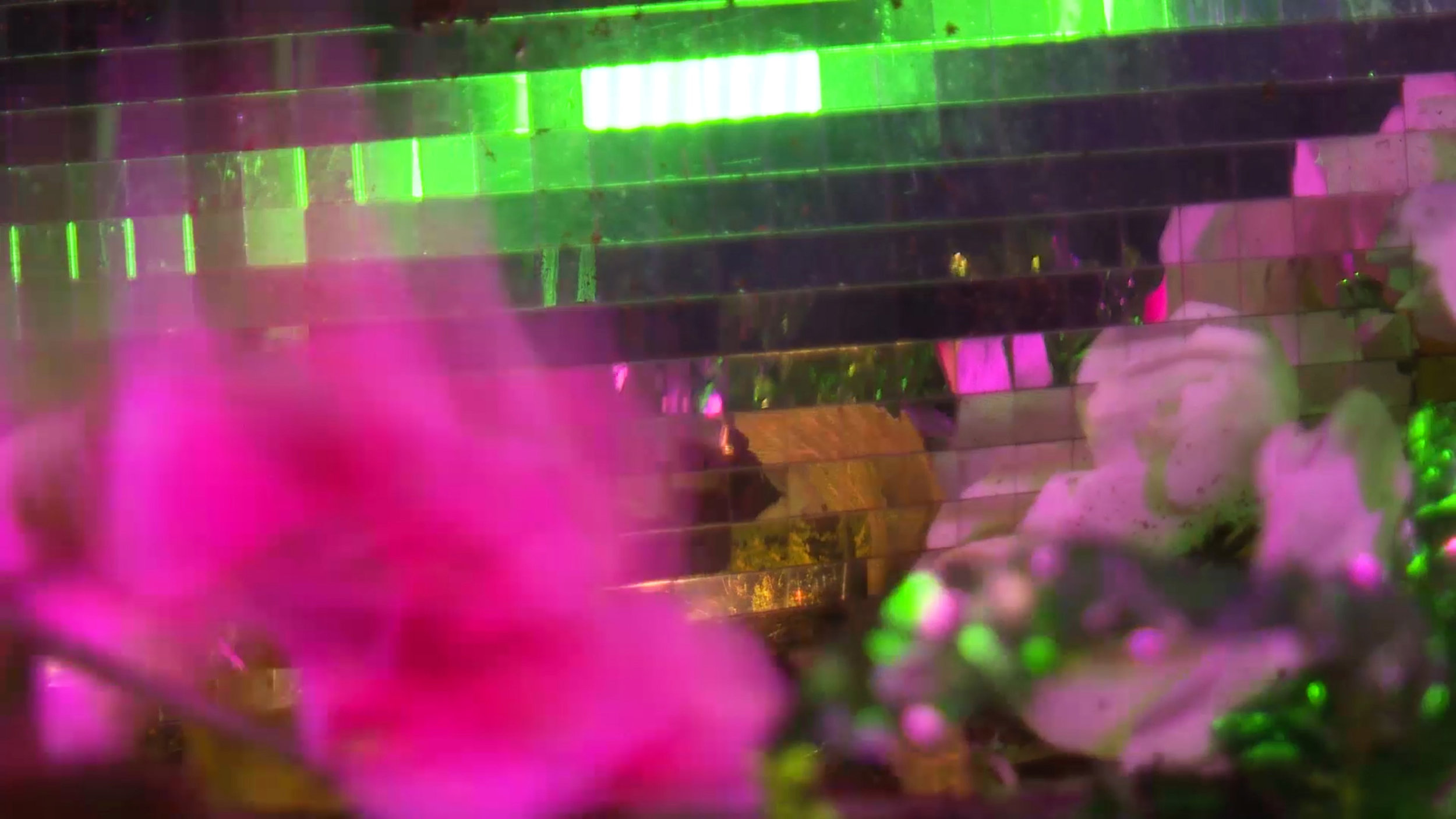 livefilm1still.jpg