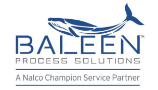 Baleen_Process_Solutions.png