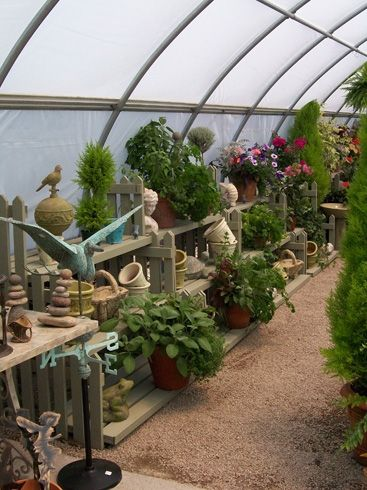 Plants-  GardenC3.jpg