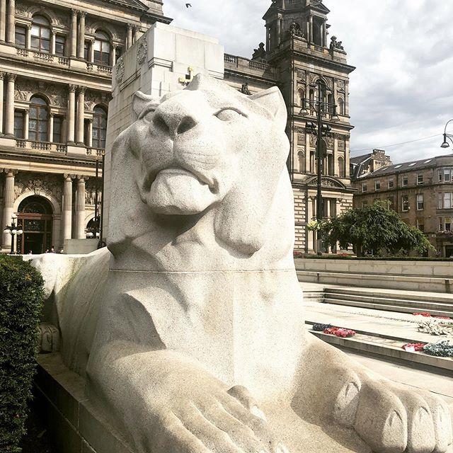 Miaooow #glasgow #georgesquareglasgow #cenotaph #guidedtours #localspecialist #lion #thelionking