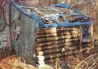The shack (cvlnation)