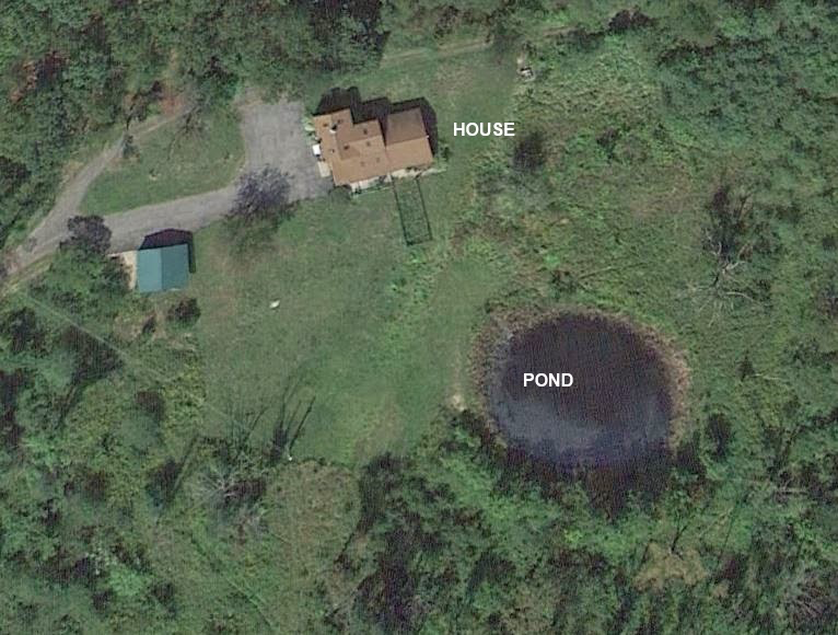 The House and Pond (Phantoms and Monsters)