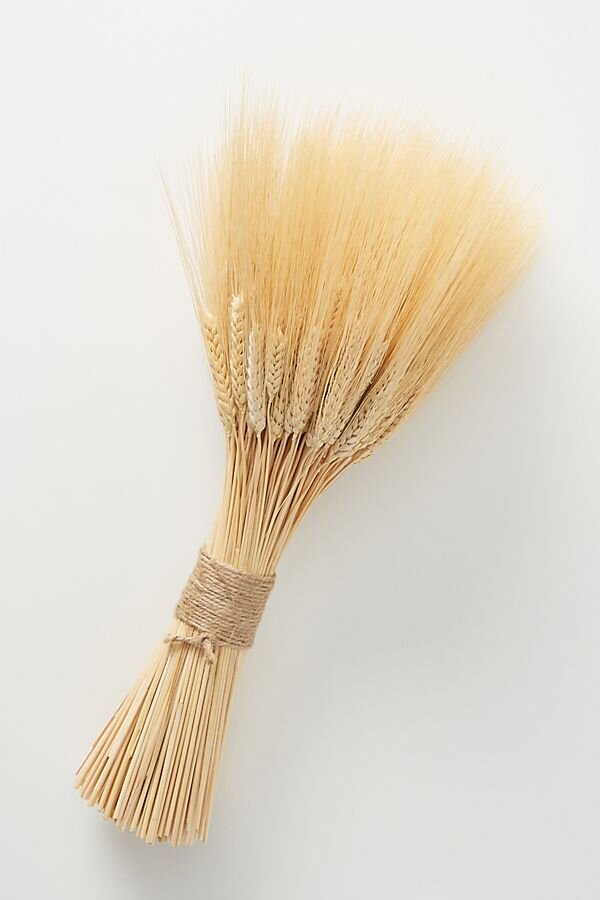 Dried wheat from    Anthropologie