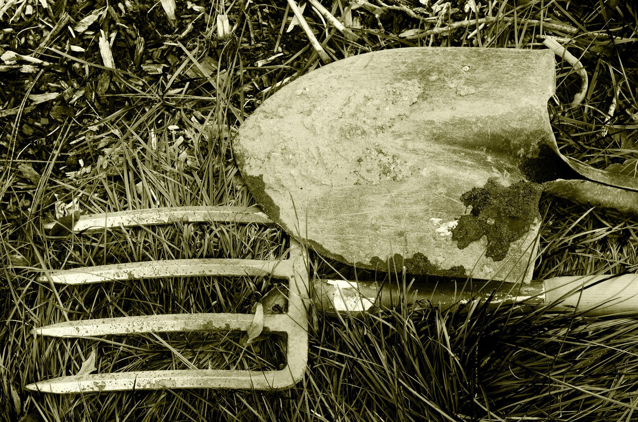 sophie-dans-les-champs-nouvelle-vie.jpg