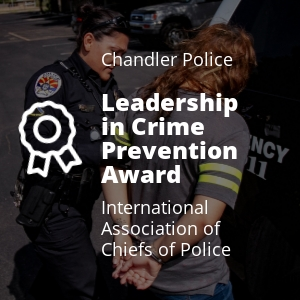 Leadership in Crime Prevention 1.jpg