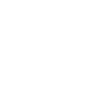 Brilliant Solutions Group Logo