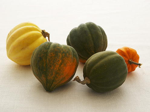 Sonya Weavil - acorn squashes.jpg