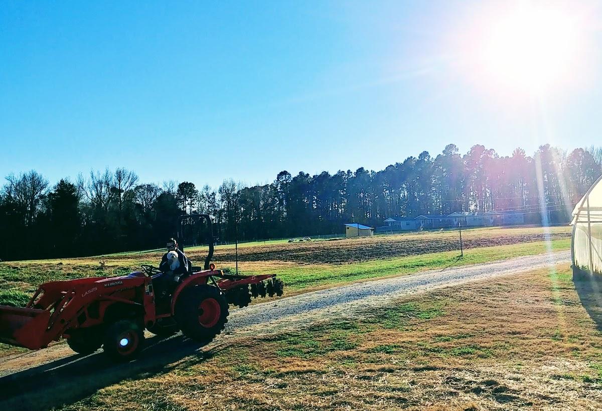 Sonya Weavil - Tim Lump Tractor.jpg