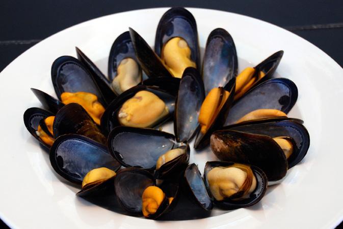 Salt Spring Mussels Info Sheet Photo 2.jpg