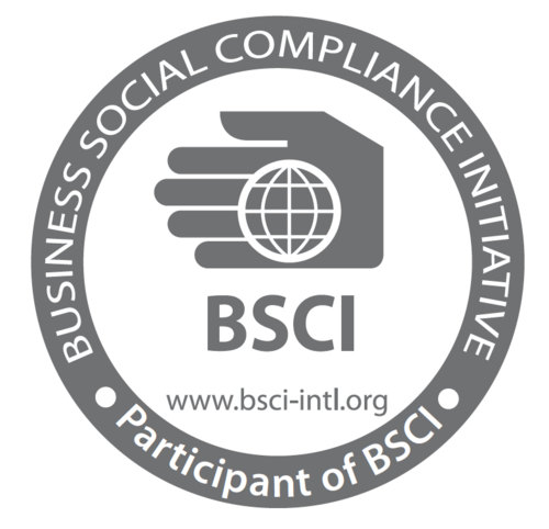 bsci-audit-services-500x500.png