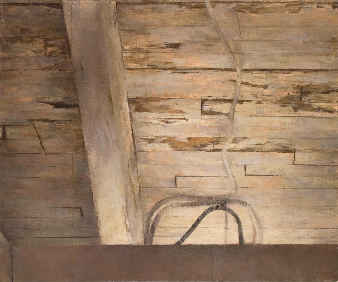 Sean's Ceiling , 2010 oil on linen, 36 x 39in