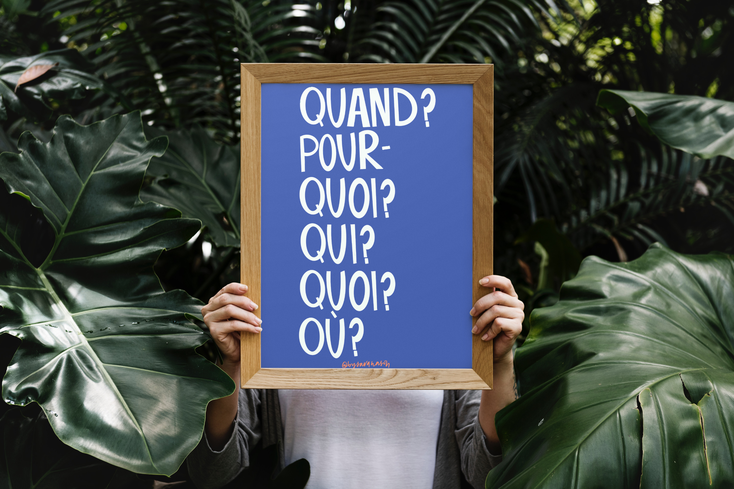 TX004 French Questions Blue
